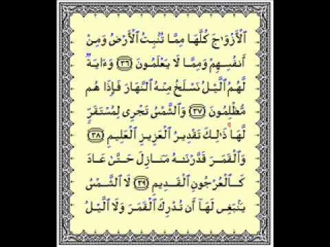 Surah Yasin recited by Sheikh Mishary bin Rashid Alafasy