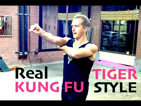 The Ultimate KUNG FU Video!  Fighting, Form, Conditioning, Performance of Kata Image 1