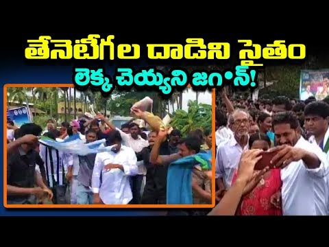 Honey Bees Attack On YS Jagan's Padayatra At Kanuru Cross Road | West Godavari | Mana Aksharam