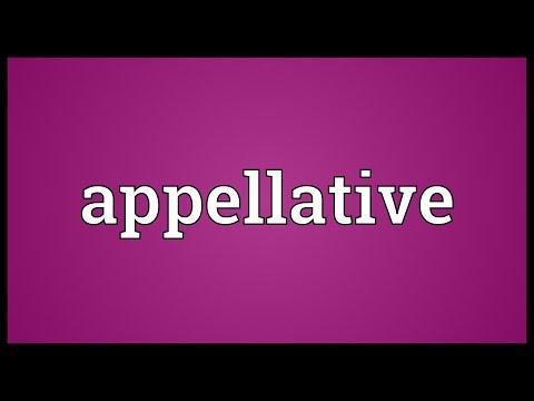 Header of appellative