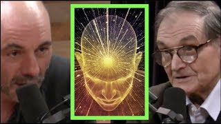 Joe Rogan - Mathematician on Trying to Measure Consciousness