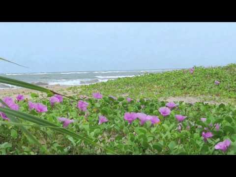 Explore Sri Lanka - Trincomalee