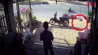 Cố gắng chạy qua đường chó gây tai nạn kinh hoàng cho tài xế | Lists 10 sự thật