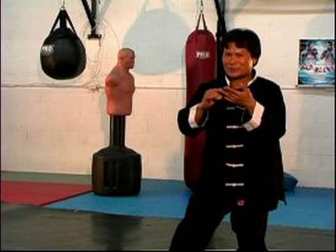 Basic Tai Chi Chuan Moves : The Liu Technique for Tai Chi Image 1
