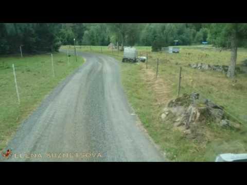 РАБОТА В РЕЙСЕ Швеция Выгрузка на лошадиной ферме вообще адреса нет