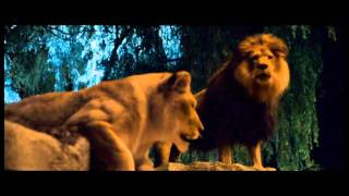 Zookeeper: Cher as Janet (the lioness)