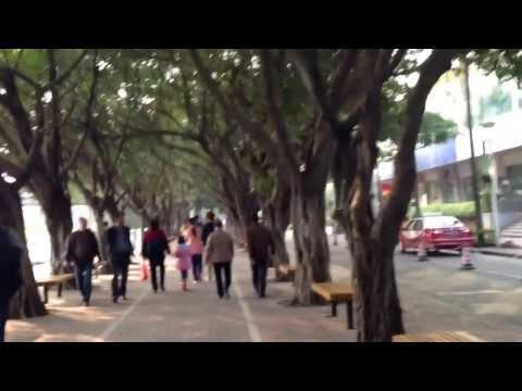OCT Pedestrian Shenzhen