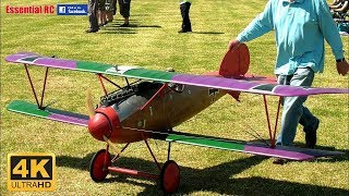 DAWN PATROL Large Scale WW1 WARBIRDS and FIGHTERS (RC radio controlled)