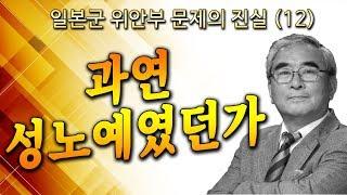 [ 일본군 위안부 문제의 진실 (12) ] 과연 성노예였던가