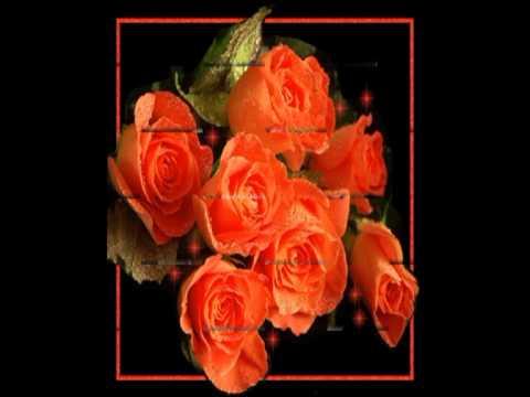 Золотится роза чайная....avi