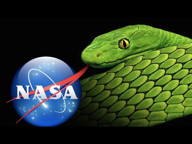 YOU WON'T BELIEVE WHAT NASA IS DOING NOW! (SCIENCE TECHNOLOGY) thumbnail