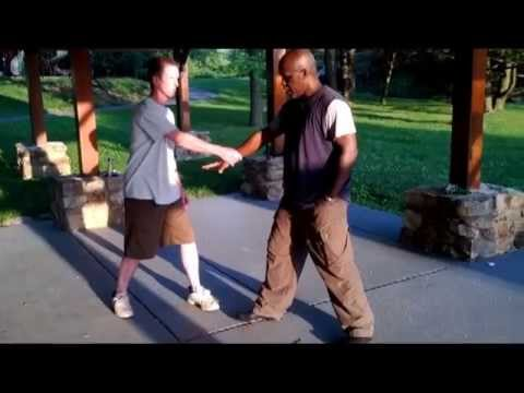 Yang Tai Chi Chuan 108 Combat Fighting Technique Pt.2 Image 1