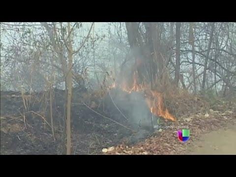 Impresionantes estragos ecológicos por incendios en Colombia