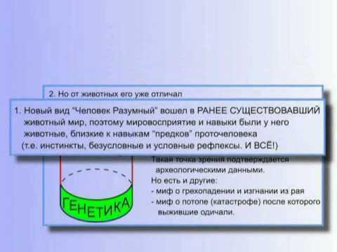 Концепция общественной безопасности скачать mp3