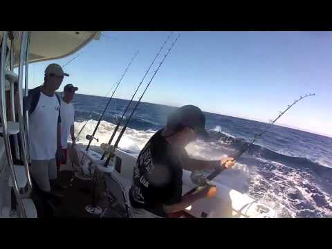 Turtle Bay Fishing 2012