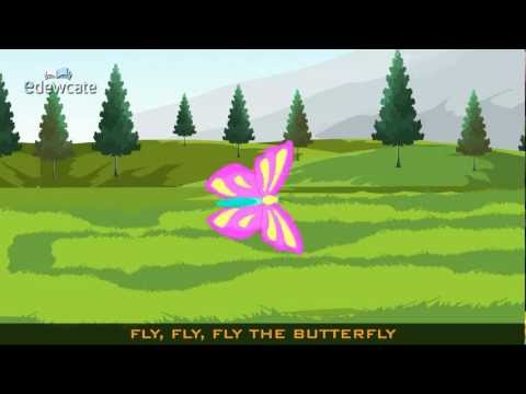 Edewcate english rhymes – Fly, fly, fly the butterfly
