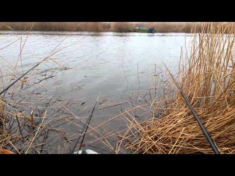 приморско-ахтарск рыбалка и запреты