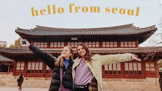 Celebrating my Birthday in Seoul, South Korea | Travel Vlog