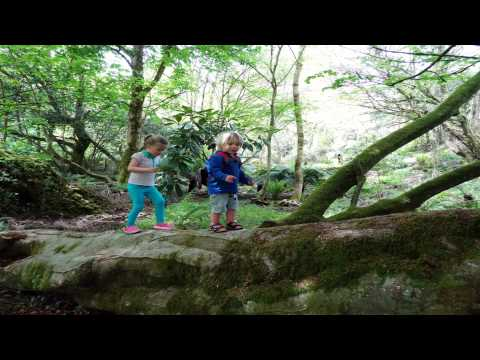 Tremenheere Sculpture Garden Penzance Cornwall