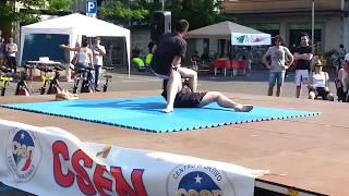 Festa dello sport Broni 2014 - MMA