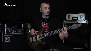 RAVEN LORD - Lucio Manca - World out of Steel (Heavy Metal)