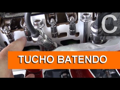 Dr CARRO Tucho Batendo Folga Alojamento
