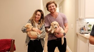 SURPRISING GIRLFRIEND WITH PUPPIES!!