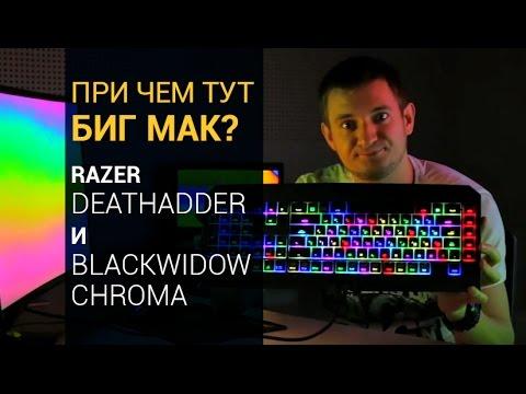 Обзор игровой мыши и клавиатуры Razer Deathadder ✔ Razer BlackWidow Chroma