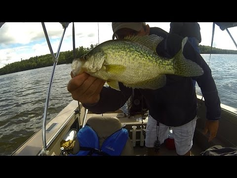 Lake of the Woods Crappie Fishing - September 2014