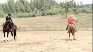 Impulsion and Control for Your Horse - Parelli Four Savvys FreeStyle