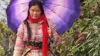 Nkauj Hmoob Lao Cai Officia