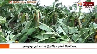 கஜா புயலால் 40 ஆயிரம் வாழை மரங்கள் சேதம்
