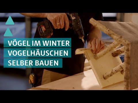 BAUEN & WOHNEN: Vogelhäuschen selber bauen (Sendung vom 12.12.2016)