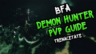 8.0.1 Demon Hunter PvP BFA Guide | by the Highest DH in the World