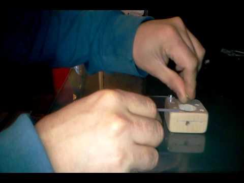 video-2012-01-02-16-44-05.mp4