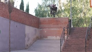 Courage Adams - Animal Bikes - BMX