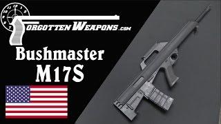 Popular Bushmaster Firearms International & AR-15 videos