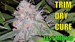 Marijuana Harvest Trim Dry Cure Super Easy Method  Perfectly Cured Buds Crop After Crop