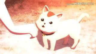 Top 5 mejores animes cortos