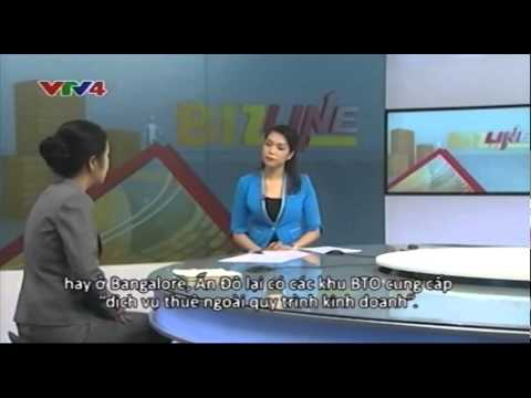 VTV4 Bizline: Special Economic Zones in Vietnam | 14/06/2014