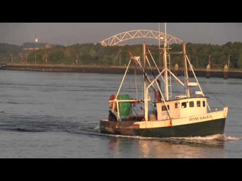 Fishing the Cape Cod Canal - Harvest Time