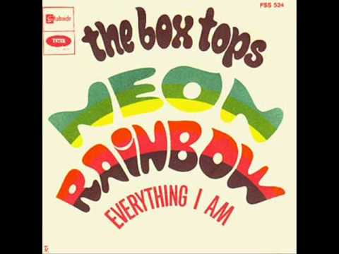 Box Tops - Neon Rainbow
