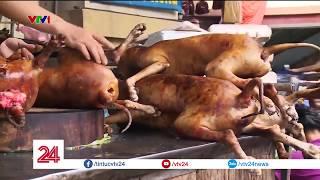 Dễ hay khó việc từ bỏ ăn thịt chó? | VTV24