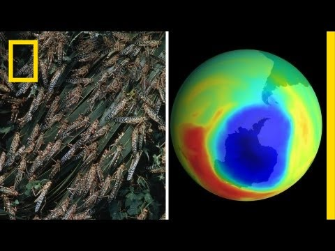 National Geographic Live! - Cannibal Bugs and Climate Battles