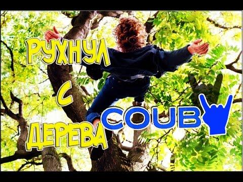 Funny videos coub приколы и смешные моменты в coub #8.Упал с дерева...