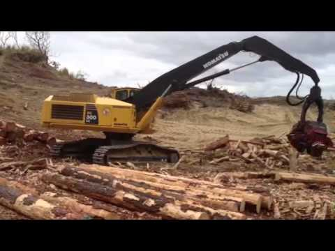 Logging nz