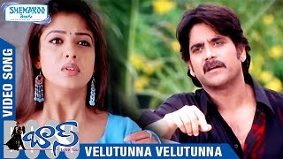 Boss I Love You Telugu Movie Songs   Velutunna Velutunna Full Video Song   Nagarjuna   Nayanthara