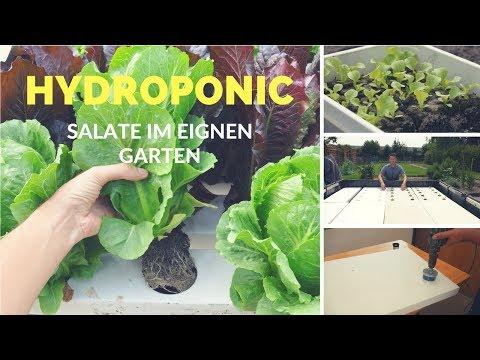 Hydroponic Salate im eigenen Garten anbauen | Teil 1