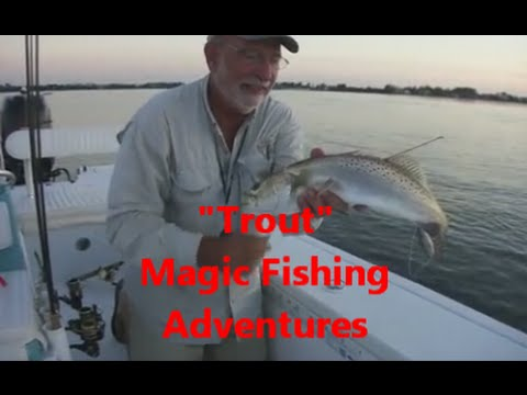 Sarasota Fishing Charters FL + Siesta Key