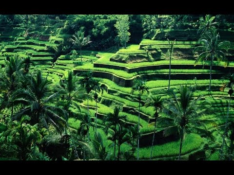 Indonesia: Top 10 Tourist Attractions - Video Travel Guide